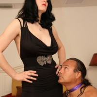 Brunette mistress Shae Fatale hog ties her masculine before undressing to her lingerie and high-heels