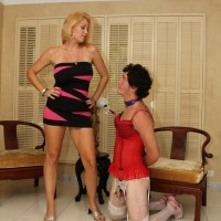 Sexy blonde wife Charlee Chase instructs her stocking and lingerie clad sissy boy