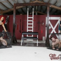 Hot wives Daisy and Ducati keep their submissive husbands in dog cages
